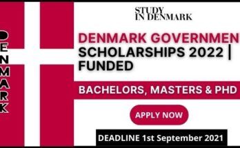 Denmark Government Scholarships